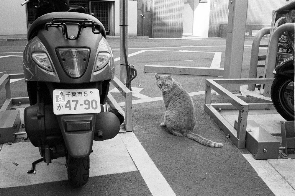 2018_04_13_Tokyo_LeicaM6_HP5_9.jpg