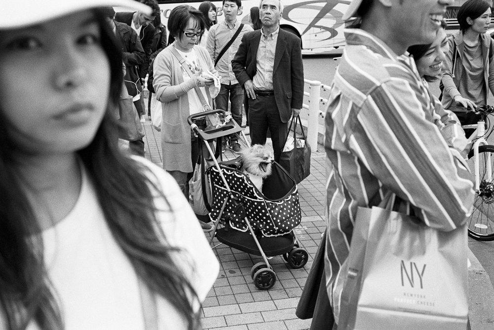 2018_04_15_Tokyo_LeicaM6_HP5_18.jpg