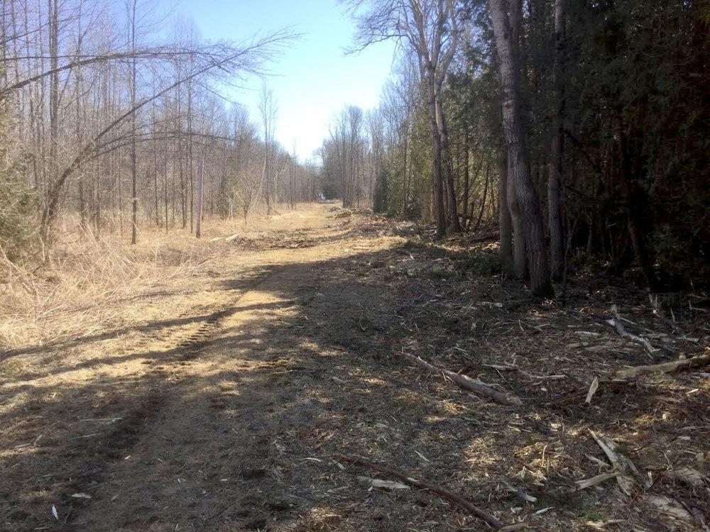 max trail finish2.jpg