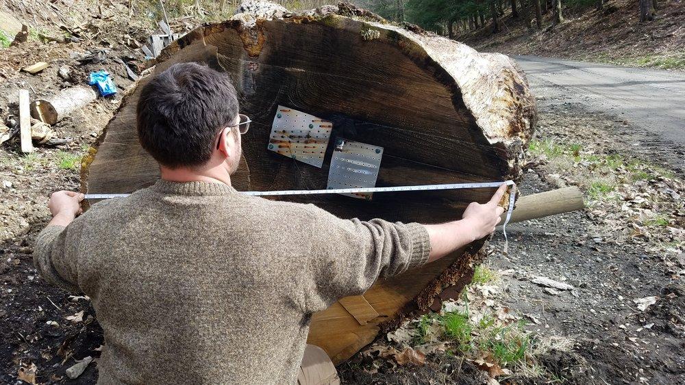 charlie with log.jpg