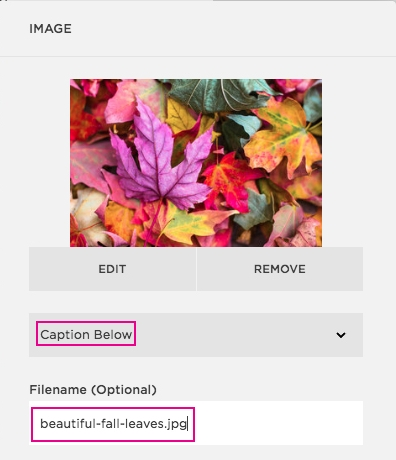 Don't forget to optimize your images! Be descriptive with file names and captions.