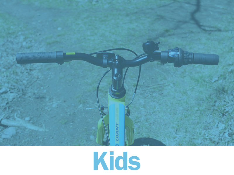 kids_link_overlay.jpg