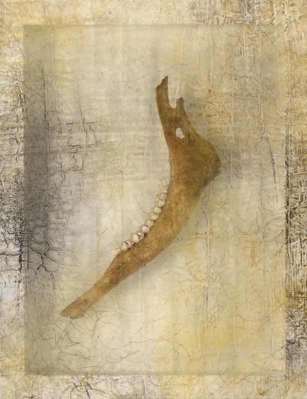 Sonya Kelliher-Combs, Remnant (Moose Jaw), 2016
