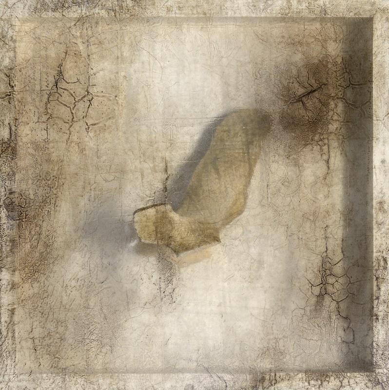 Sonya Kelliher-Combs, Remnant (Walrus Bone), 2016