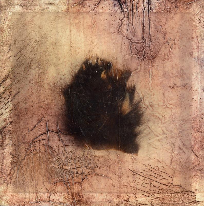 Sonya Kelliher-Combs, Remnant (Wolverine Paw), 2016