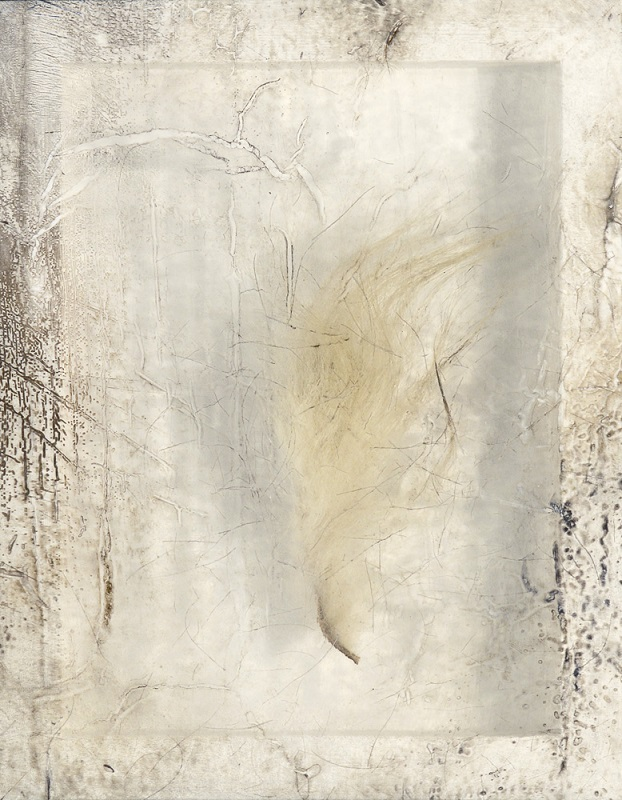 Sonya Kelliher-Combs, Remnant (Polar Bear Fur), 2016