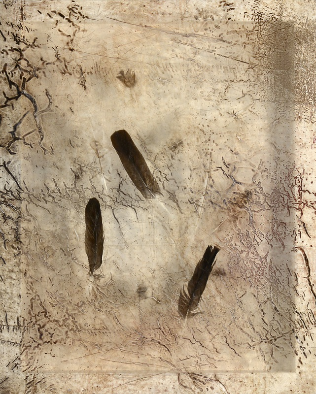 Sonya Kelliher-Combs, Remnant (Small Feather), 2016