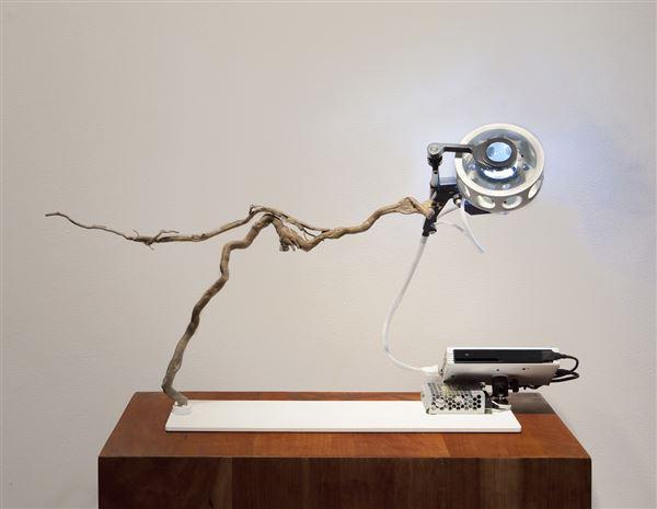 Joel Hobbie, Untitled, 2017