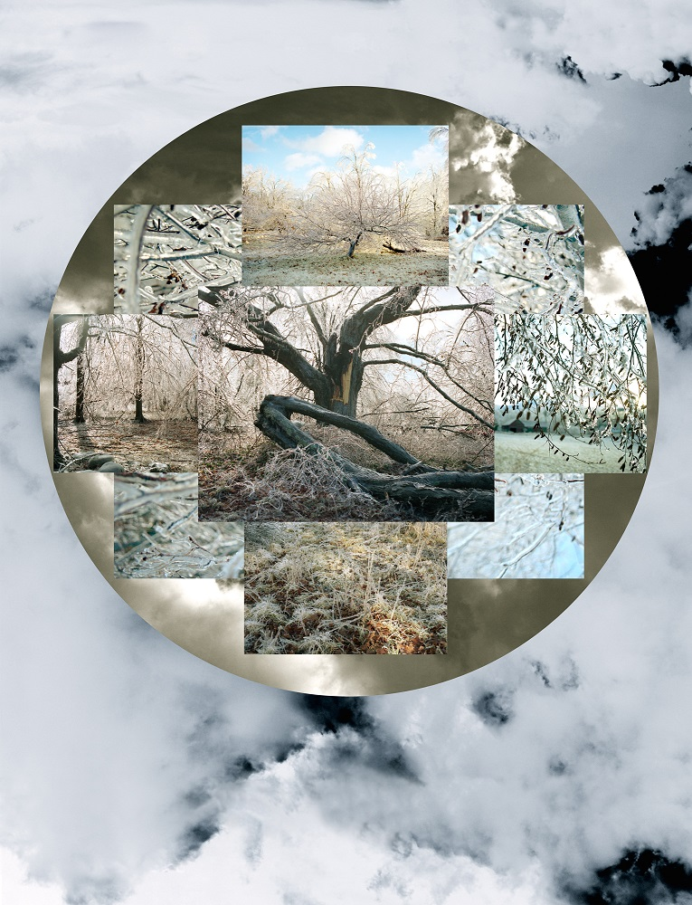 Winter Seasonal, 2/5, 2009-2011