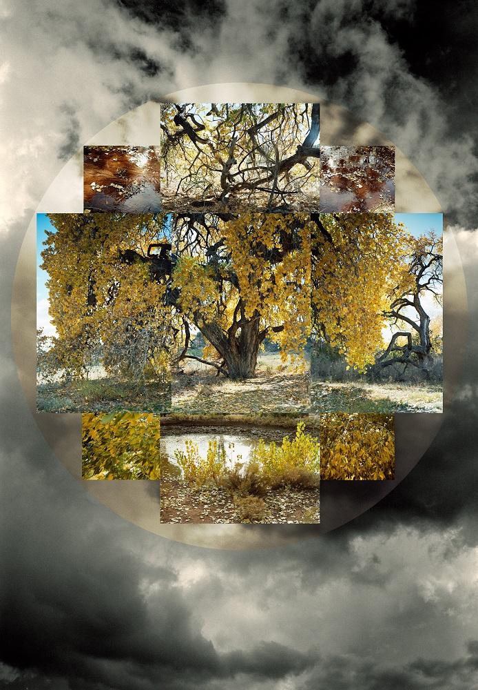 Fall Seasonal, 2/5, 2009-2011