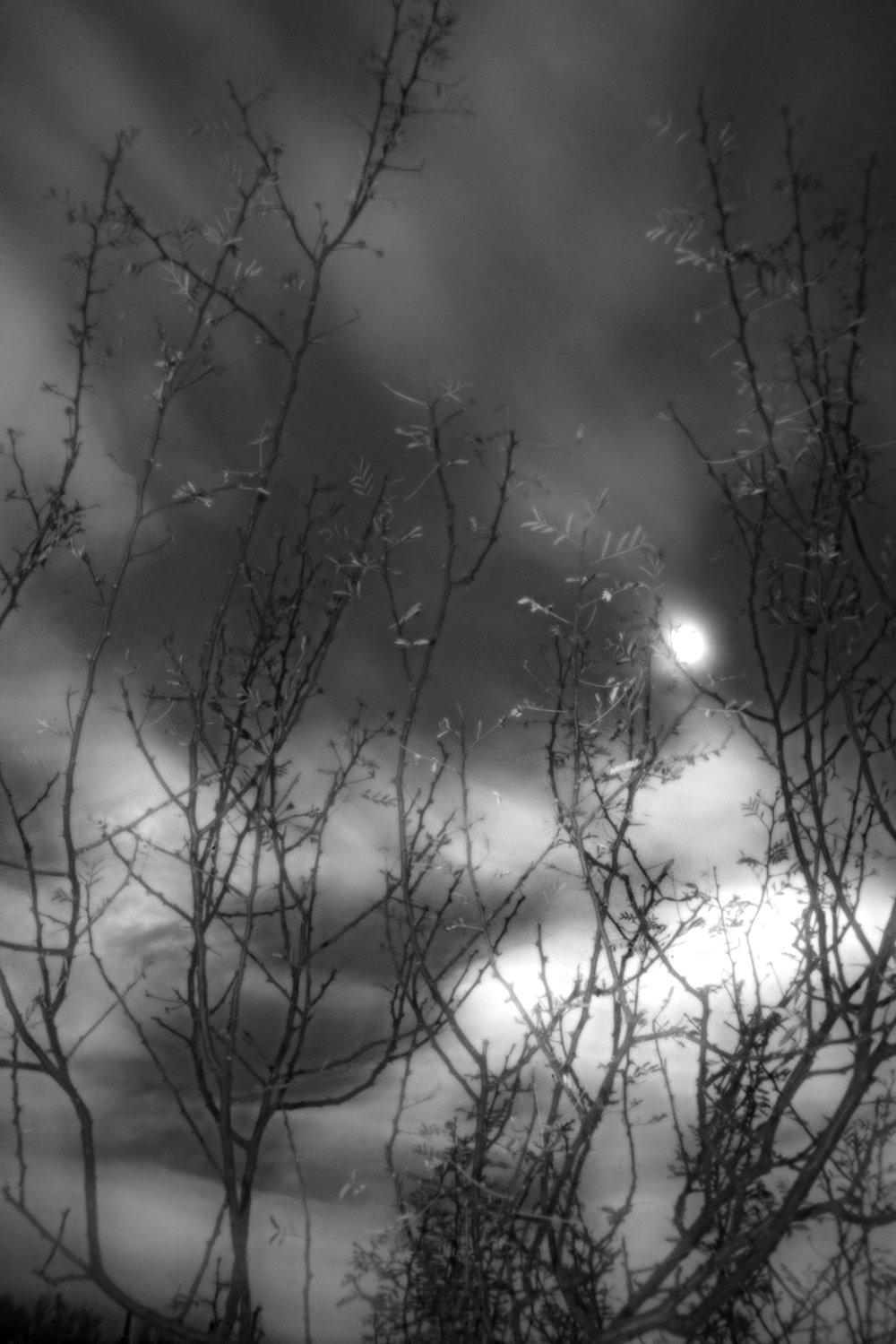 Afternoon-StormC72.jpg
