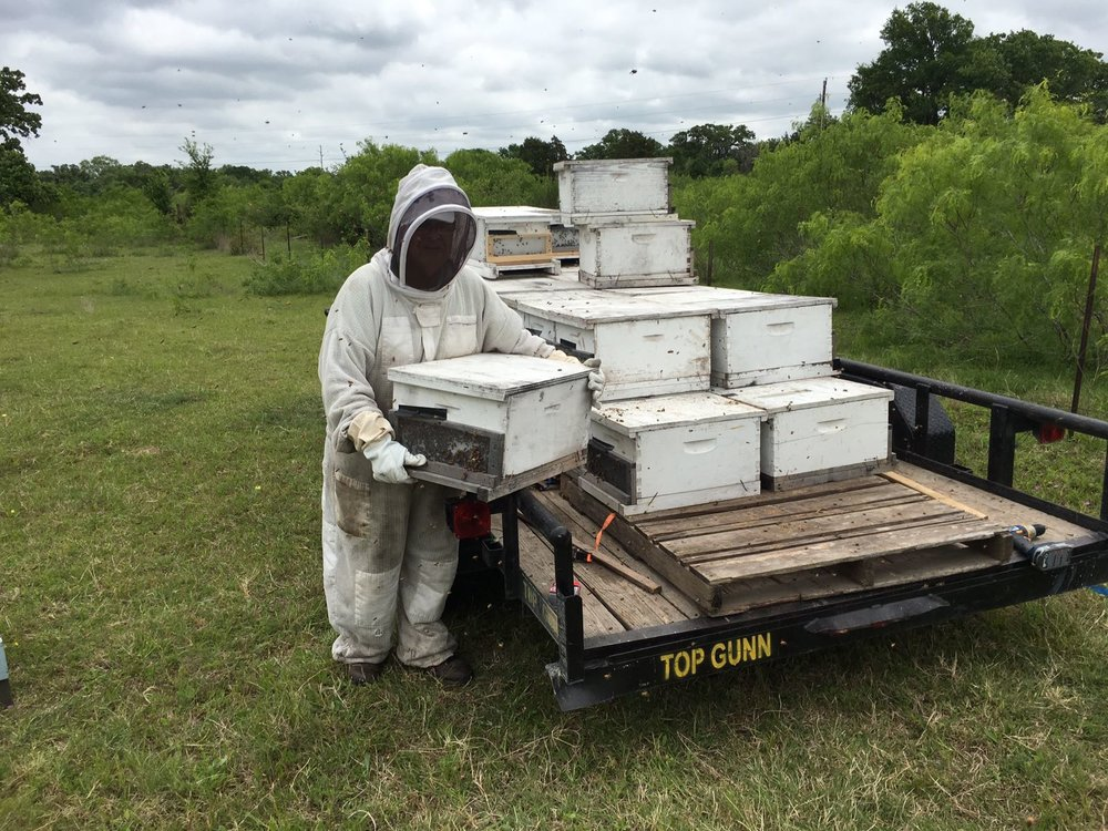 beekeeper-austin-honey.jpg