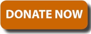donate-button-logo-blue-rectangle1.jpg