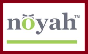 noyah_logo_big+bleed.png