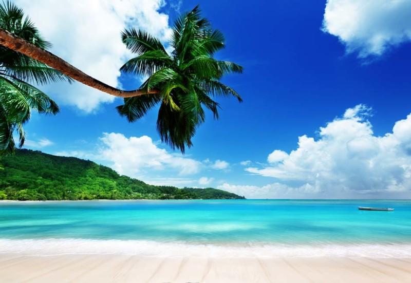 tropical-island-800x551.jpg