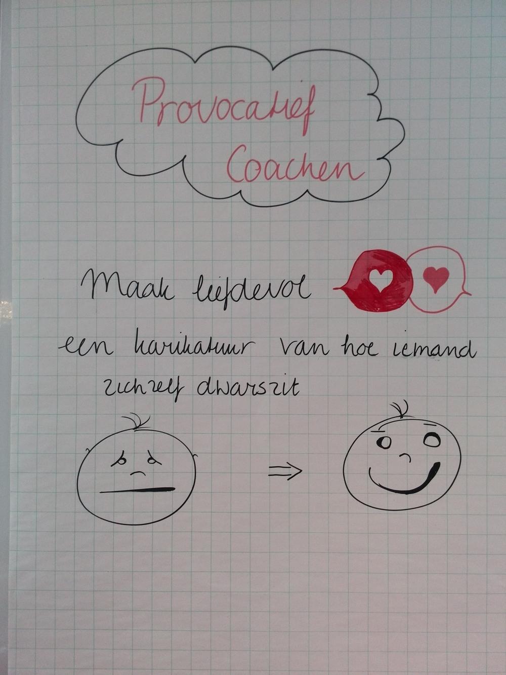 Opleiding provocatief coach door Veldl