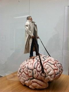 Vendl Farbe Brein