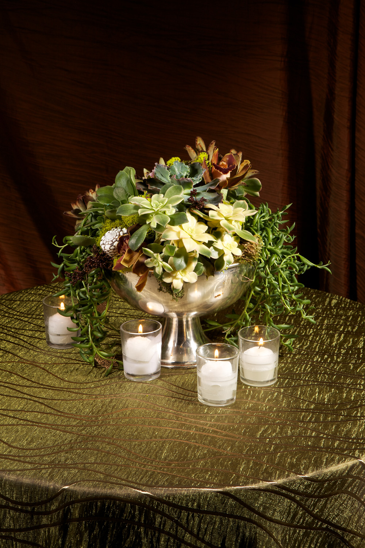EMB  099 Embellishmint Floral & Event Design Studio succulents.jpg