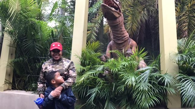 Islands of Adventure: Orlando, Florida Review