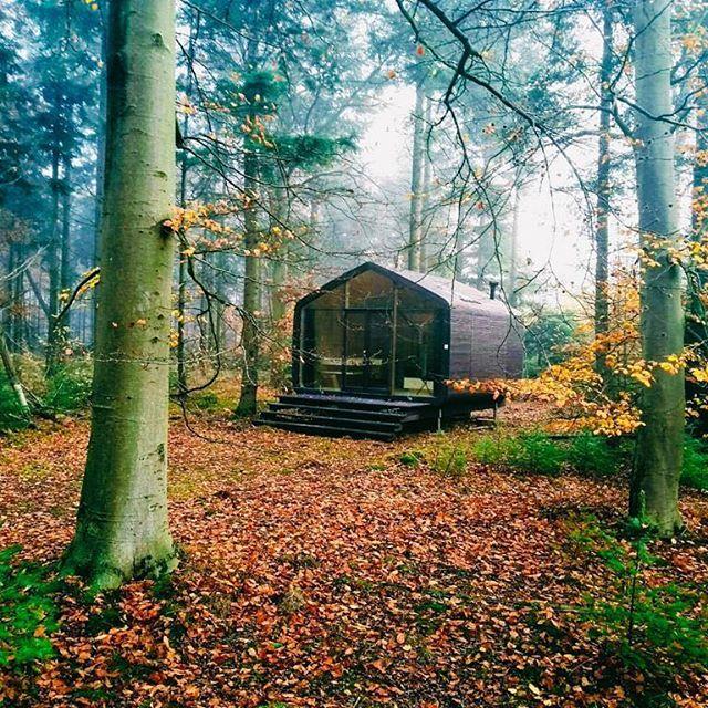 Onze nieuwe Cabiners staan klaar midden in het herfstige bos! Ze worden momenteel getest en zullen begin 2019 te boeken zijn! ✨ • • • #cabin #staatsbosbeheer #zelfvoorzienend #middenindenatuur #drenthe #remote #sustainable #avontuur #wanderlust