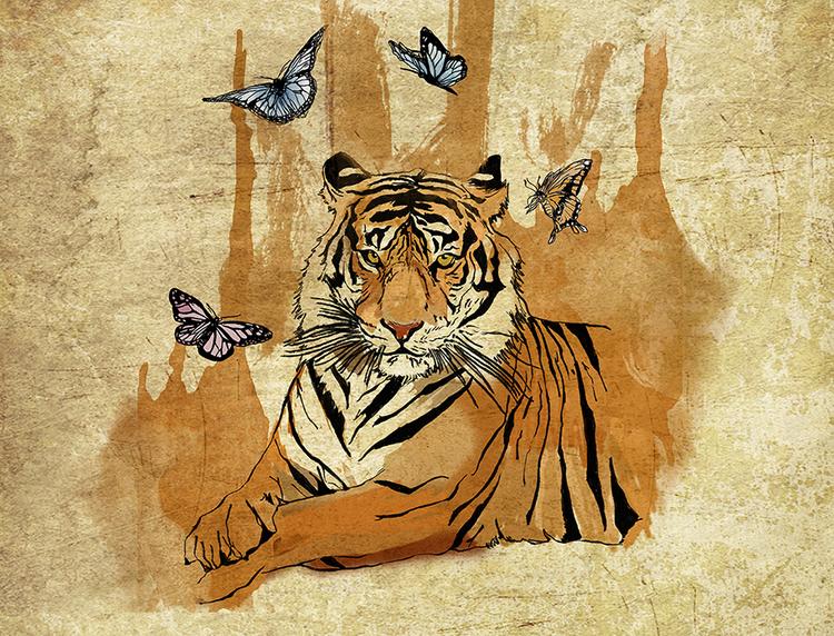ilustracion tigre de bengala.jpg