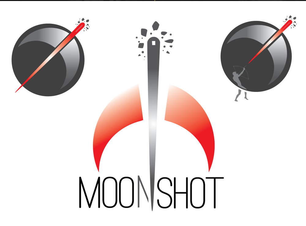 Moonshot visual dev.jpg