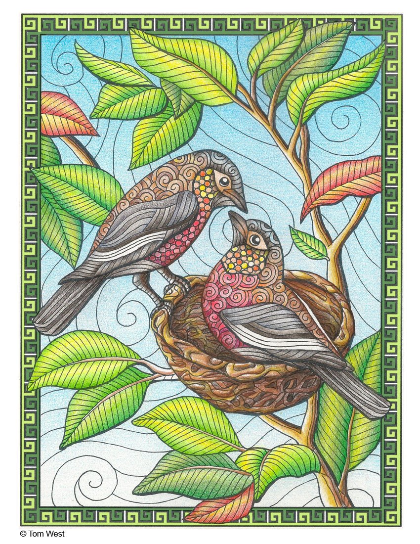 Bird Nest Coloring Book Page