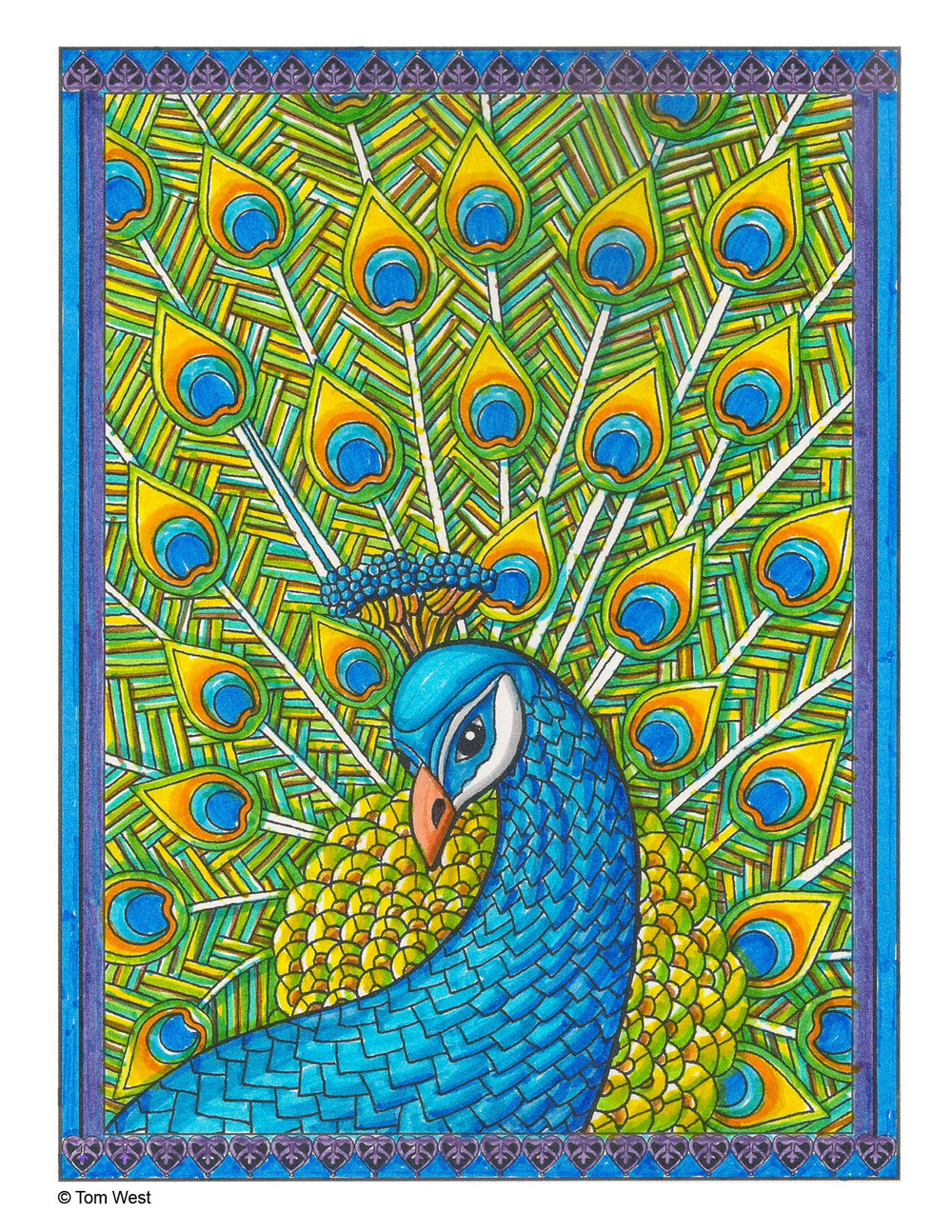 Peacock Coloring Book Page