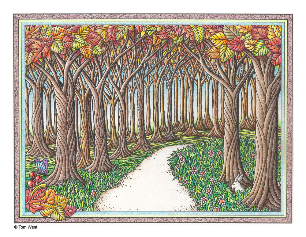 Forest Coloring Book Page