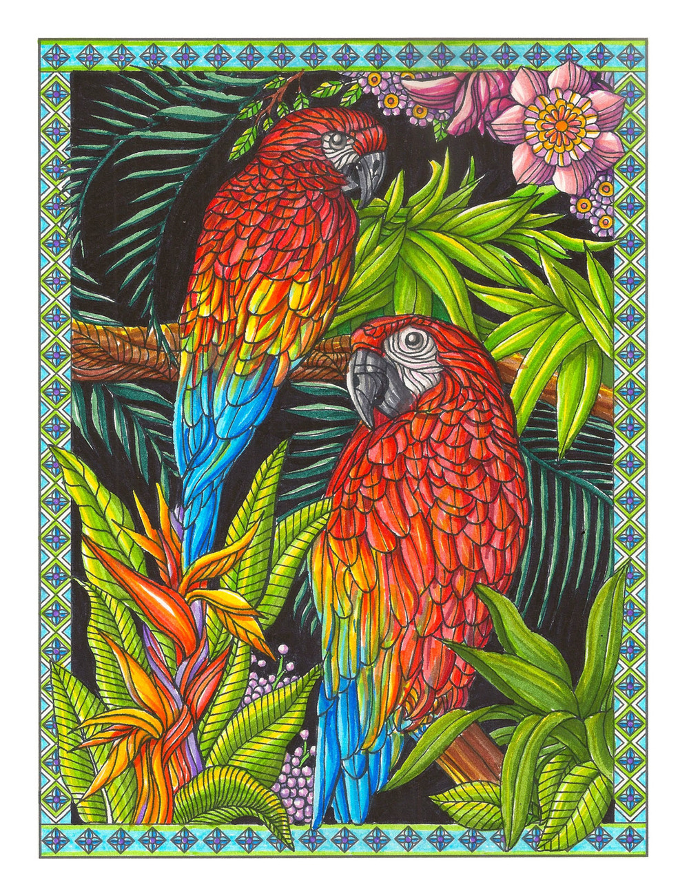 Parrot Coloring Book Page