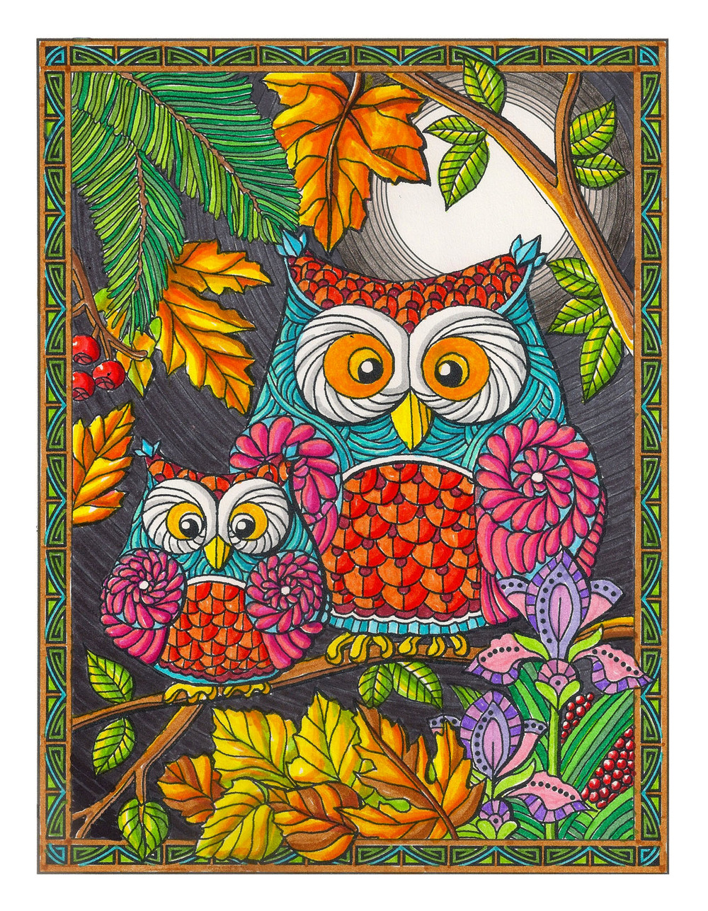 Owls Coloring Book Page
