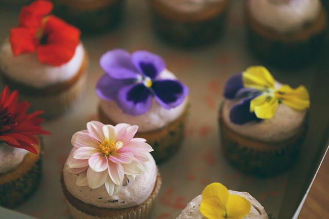 simple. vibrant. fresh.  almond cupcakes with blackBerry whip cream.