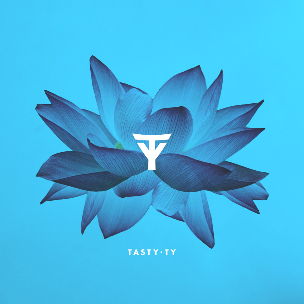 Tasty Ty - Branding - Variation 2.png