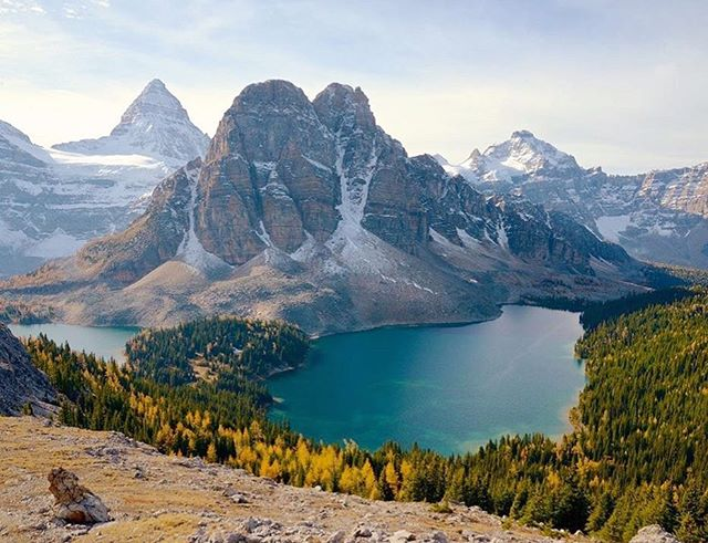 Dear Canada 🇨🇦 , thanks for being such an amazing place. We are so grateful to call this beautiful country our home. We wouldn't have it any other way. Keep being awesome, Canada.🍁 . 📷: @intergalactic_timetraveller . . . . #greenhut #canadaday #mountains #mtassiniboine #ohcanada #ohcanada🇨🇦 #canadaeh #rockymountainlifestyle #mountainlifestyle #lakes #takeahike #meetmeinthemountains #hiking #forest #larchtrees #happycanadaday #happycanadaday🇨🇦