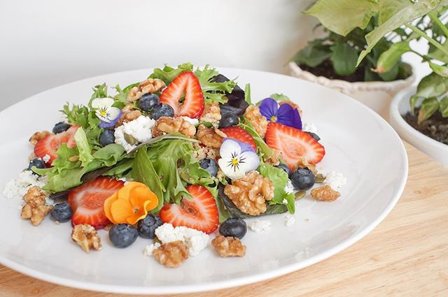 You know it's summer when berry season gets in full swing! 🍓 . Spring Greens // Quinoa // Maple Candied Walnuts // @soutofarms Strawberries and Blueberries // Pumpkin Seeds // Goat's Cheese and our signature Balsamic Vinaigrette make for a pretty killer salad! . This week we're featuring this brand new Summer Salad at our location in @downtowncanmore as well as at the @banfffarmersmarket and @canmoremountainmarket . . . . . . . . . . #greenhut #food #plantbased #veganfood #veganfoodshare #salad #healthy #smoothiebowl #smoothie  #glutenfree #organic #greens #wholefoods #foodtruck #whatveganseat #noanimalsharmed #greens #cleaneatingideas #yogaeveryday #practiceandalliscoming #downtowncanmore #yycfood #yyceats #supportlocalbusiness #feelgreat #dishedvan #realsimple #geniuskitchen #epicurious #rslove