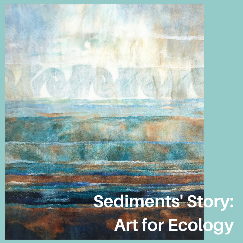 Sediments' Story_Art for Ecology.png