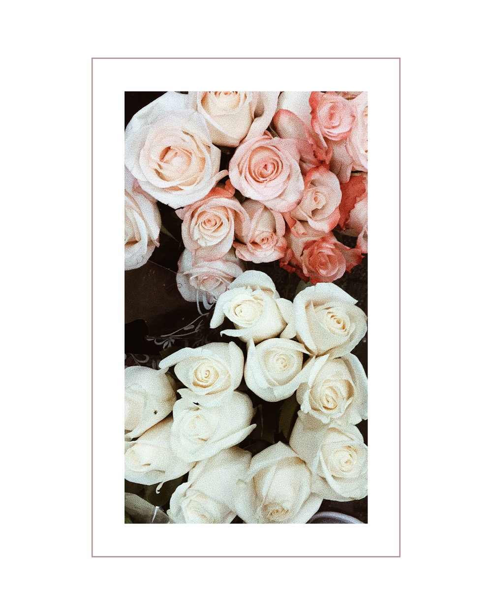 Rebecca Allen | Flowers
