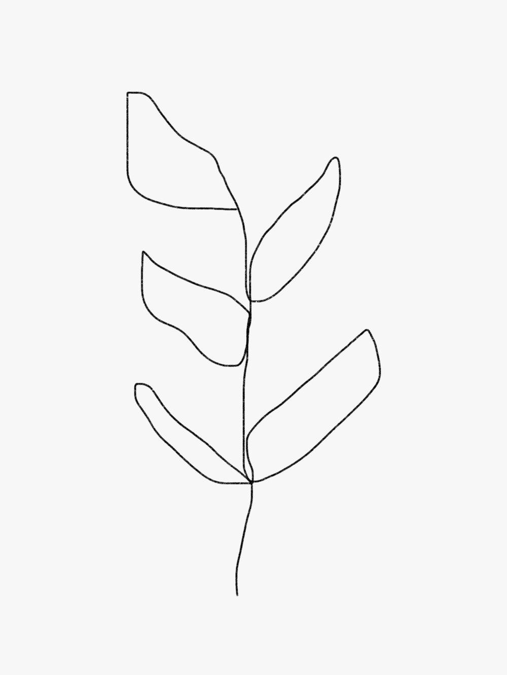 leaf-new-02.jpg