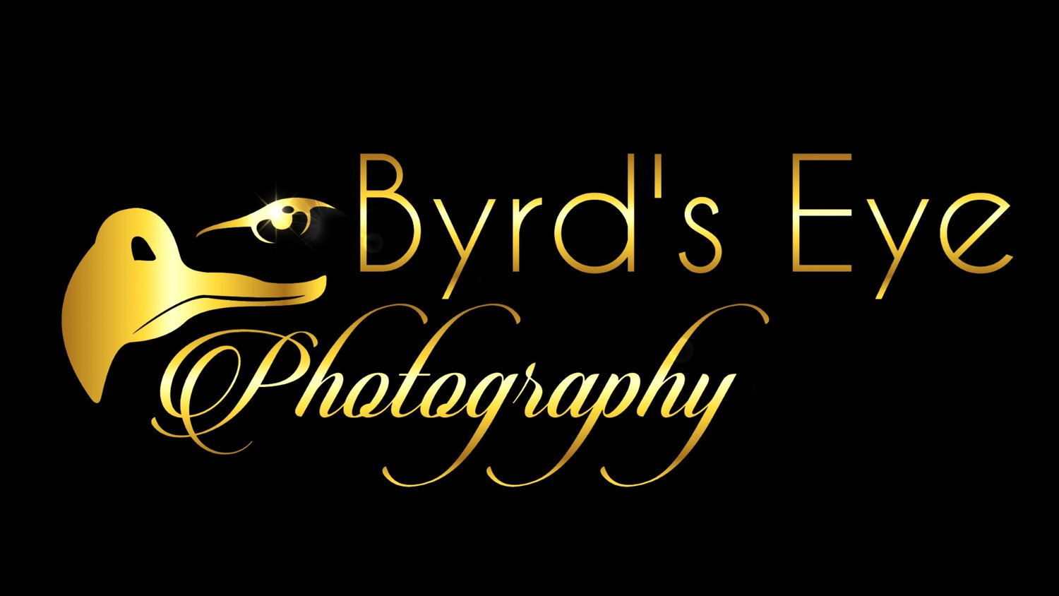 Byrds Eye Photography