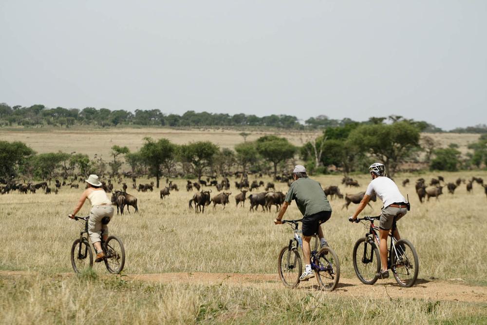 Bike Safari, Singita Grumeti Reserves