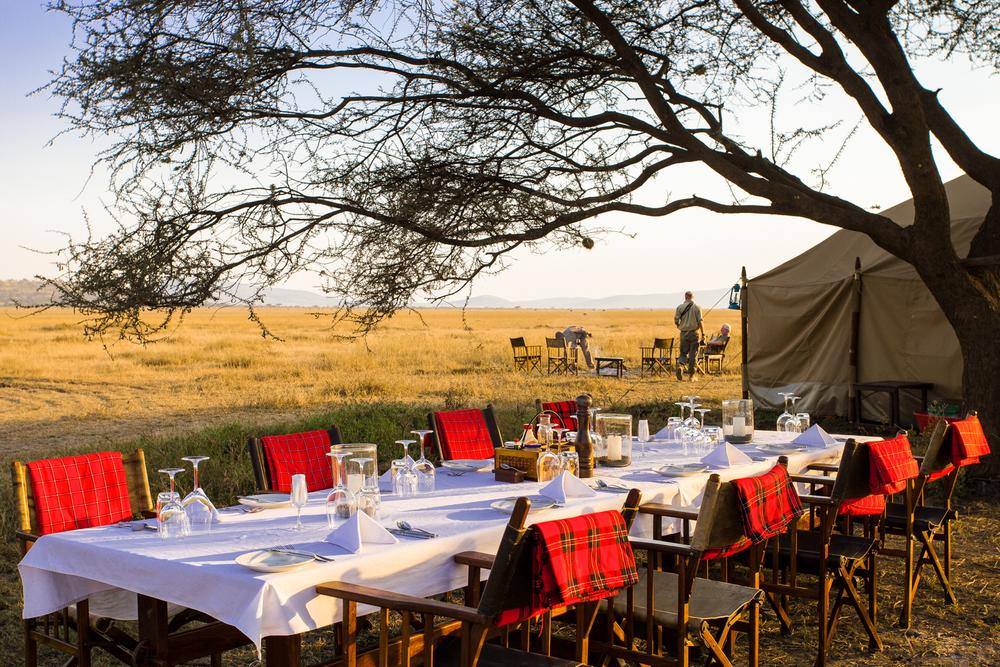 Bush Lunch, Serengeti National Park, Tanzania