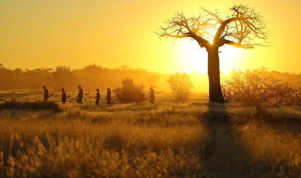 Walking Safari, Ruaha National Park