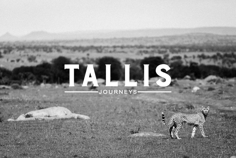 Tallis Journeys Cheetah Tanzania Travel Safari Luxury.jpg