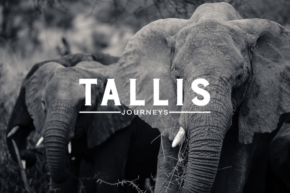 Tallis Journeys Tanzania Africa Luxury Safari.jpg