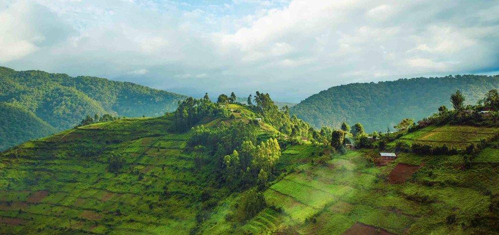 Rwanda Uganda Country Safari Holiday.jpg
