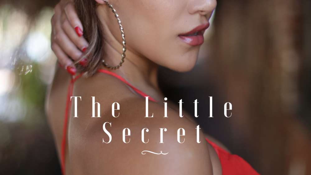 Donate at https://igg.me/at/the-little-secret