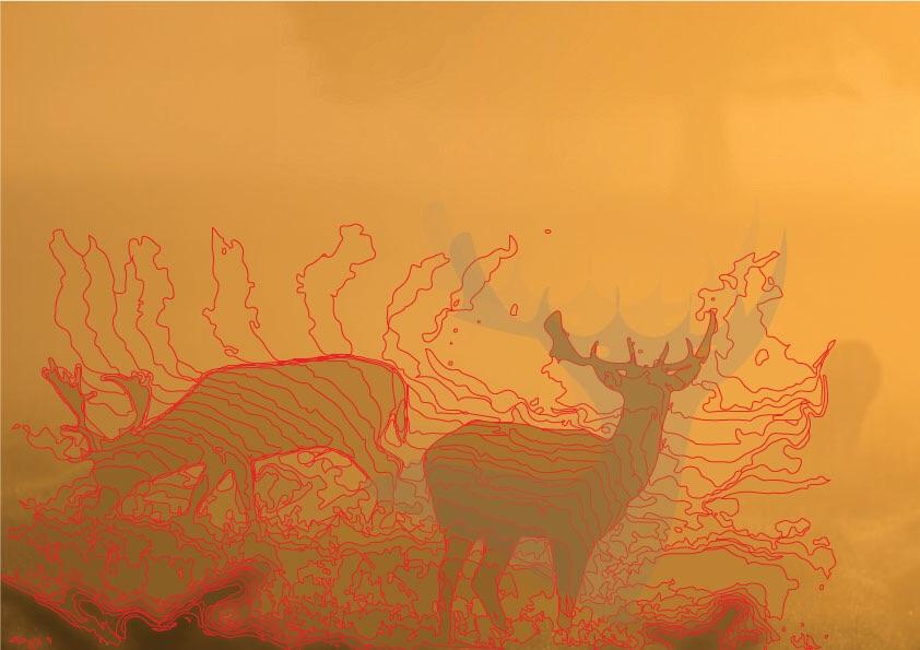 Composite Deer