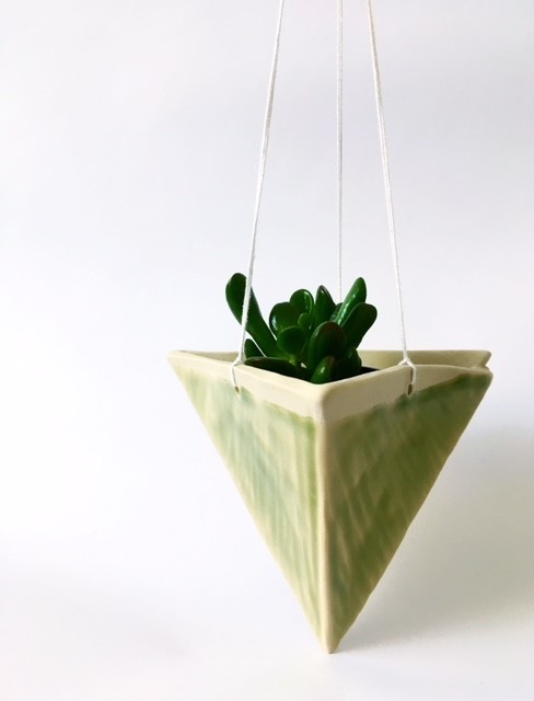 plant9.jpg