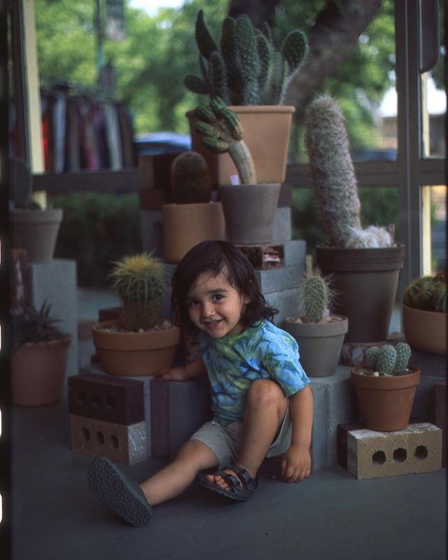 Theo exploring @publiclandstore (shot late summer 2018)  _____ #minolta #minoltasrt201 #fuji #fujifilm #cacti #cactus #garden #shoplocal #sacramento #succulents