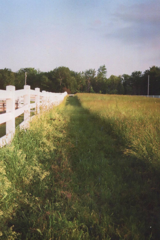 Hay Path.jpg